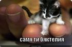 https://lolkot.ru/2011/09/24/samya-ti-byakteliya/