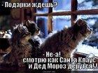 https://lolkot.ru/2011/03/26/santa-moroz-i-ded-klaus/