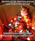 https://lolkot.ru/2013/12/18/schastem-zvezdanutyy/