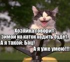 https://lolkot.ru/2020/01/02/sezonnaya-podgotovka/