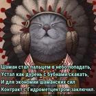 https://lolkot.ru/2017/01/18/shamanu-dali-v-buben/