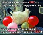https://lolkot.ru/2014/09/10/sharmelka-vozdushnaya/