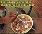 https://lolkot.ru/2013/12/12/shashlyk-bez-shampura/