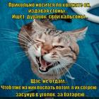 https://lolkot.ru/2015/05/08/shtaninomahinator/