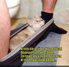 https://lolkot.ru/2014/04/20/shtukovina/