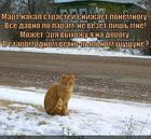 https://lolkot.ru/2014/03/24/shushun/