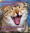https://lolkot.ru/2014/11/17/signal-k-obedu/