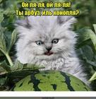 https://lolkot.ru/2018/06/06/sila-voobrazheniya-2/