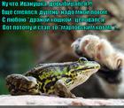 https://lolkot.ru/2015/07/25/skazochnyy-vybor/