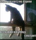 https://lolkot.ru/2011/06/18/skolko-ne-kormi-2/