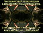 https://lolkot.ru/2014/10/05/skrytoy-kameroy/