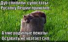https://lolkot.ru/2014/12/06/skuchayu-po-tsepi-i-dubu/