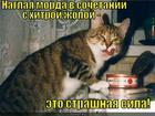 https://lolkot.ru/2012/12/08/sochetanitse/
