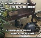https://lolkot.ru/2020/05/20/solidarnyy-tvoritel/