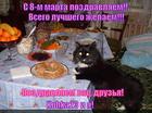 https://lolkot.ru/2014/03/08/son-neproneson-otlichnyy-zakuson/