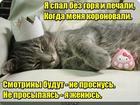 https://lolkot.ru/2018/09/26/son-pro-ne-son-pro-ne-son-son-s/