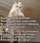 https://lolkot.ru/2014/12/16/sovety-dlya-letunchika/