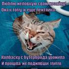 https://lolkot.ru/2014/12/01/spasibo-lentyayam/