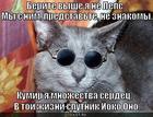 https://lolkot.ru/2013/09/03/sputnik/