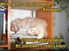 https://lolkot.ru/2014/12/12/stopka-byvayet-raznaya/