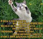 https://lolkot.ru/2015/07/26/strashnyy-drug/