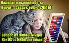 https://lolkot.ru/2016/02/17/svedeniye-schetov/