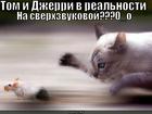 https://lolkot.ru/2010/06/08/sverhzvukovaya/