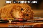https://lolkot.ru/2011/12/08/tak-mnogo-urokov/