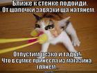 https://lolkot.ru/2014/01/08/tamozhnya-2/