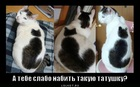 https://lolkot.ru/2011/11/09/tatushka/