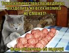 https://lolkot.ru/2014/09/16/tefteledelitel/