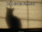https://lolkot.ru/2011/02/14/ten-kottsa-gamleta/