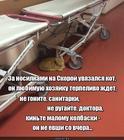 https://lolkot.ru/2020/02/16/terpelivoye-ozhidaniye/