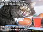 https://lolkot.ru/2013/11/03/tfu-na-vas-yeschyo-raz/