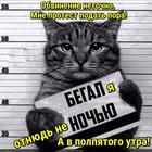 https://lolkot.ru/2016/03/05/tochnyy-protest/