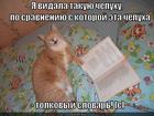 https://lolkot.ru/2013/01/25/tolkovyy-slovar/