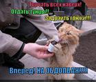 https://lolkot.ru/2013/11/13/torkat-vseh-na-verh/