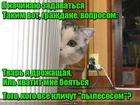 https://lolkot.ru/2019/09/30/tot-kogo-nelzya-boyatsya/