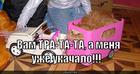 https://lolkot.ru/2010/10/29/tra-ta-ta/