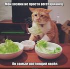 https://lolkot.ru/2019/06/26/travoyadnyy-bespredel/