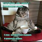 https://lolkot.ru/2016/10/03/tsarskaya-identifikatsiya/