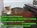 https://lolkot.ru/2020/11/22/tsenneyshiy-nedroobitatel/