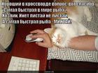 https://lolkot.ru/2014/08/13/turbomintay/