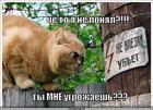 https://lolkot.ru/2011/03/13/ty-mne-ugrozhayesh/