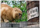 https://lolkot.ru/2011/08/18/tyotya-valya/