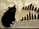 https://lolkot.ru/2013/11/13/ubezhali-ot-gryaznuli/
