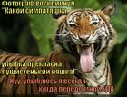 https://lolkot.ru/2015/06/01/ulybochku-4/