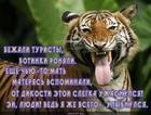 https://lolkot.ru/2014/02/09/ulybochku/