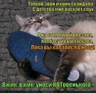 https://lolkot.ru/2013/12/11/unosi-kotovenkogo/