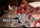 https://lolkot.ru/2010/11/01/upertyy/